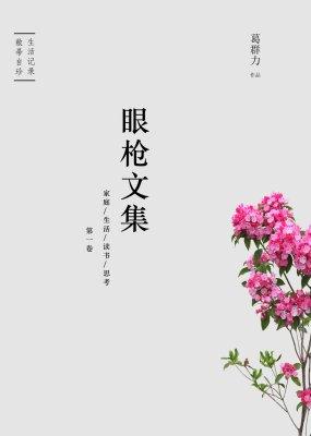 眼枪文集【家庭/生活/读书/思考第一卷】